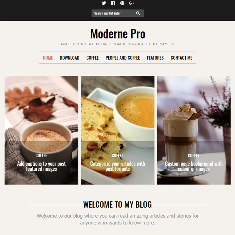 Moderne Pro Thème WordPress