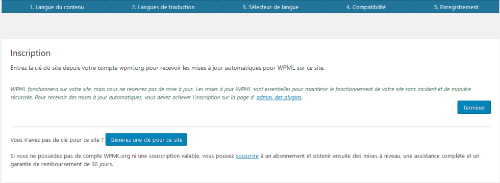 Wpml installer plugin wordpress 6