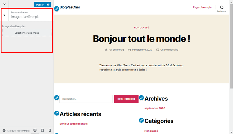Theme wordpress customizer arriere plan blogpascher