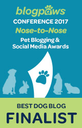 2017 BlogPaws Nose-to-Nose - BEST DOG BLOG FINALIST badge