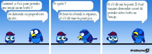 Evann © BirdsDessines.fr, 2009.
