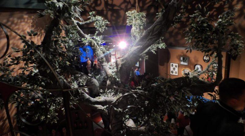54 - Castelo Rá-Tim-Bum: A Exposição - Confira nossa visita ao fantástico mundo de Nino
