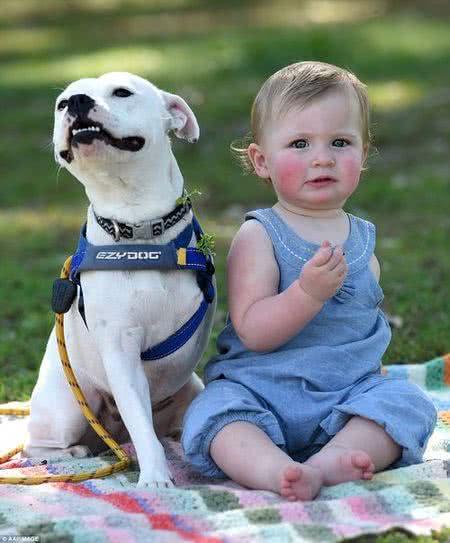 獨臂女娃與三腿狗狗