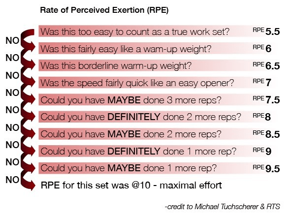 Define Borg Scale Of Perceived Exertion
