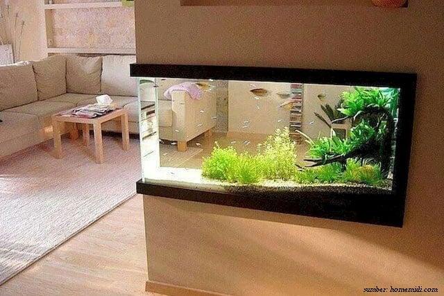 menghias ruang tamu dengan aquascape