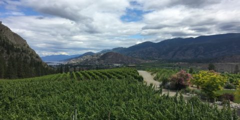 Wine Tasting in the Okanagan