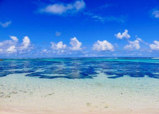 Snorkel Seychelles