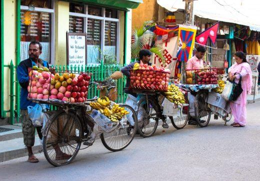 Nepal street fruit