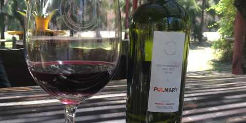 Mendoza is More than Just Malbec!