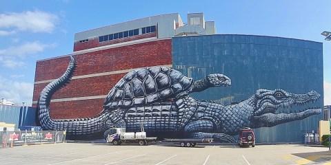 Street art in Townsville walking trail