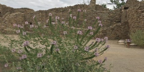 Aztec Ruins – Vestiges of an Ancestral Pueblo Society