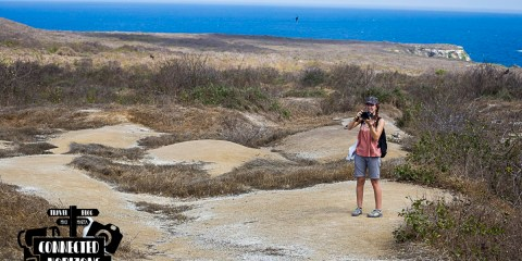 Isla de la Plata: The Backpacker's Galapagos