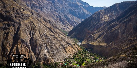 Self-guided Hike | Up & down the Colca Canyon