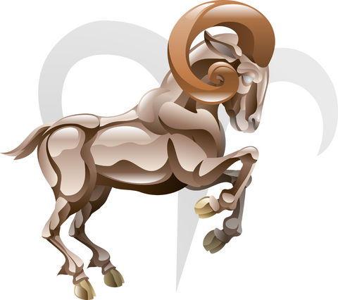 subtle healing of zodiac
