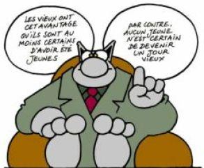 LE_CHAT_jeunes_vieux_s