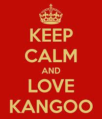 keep-calm-kangoo