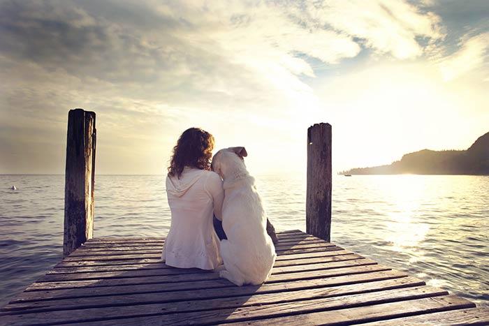 amore-cani.jpg