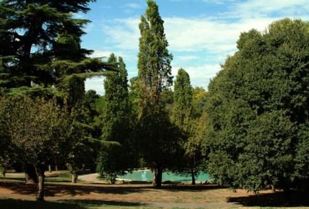 Villa-Borghese-laghetto-piccolo-0031-f.F.Q