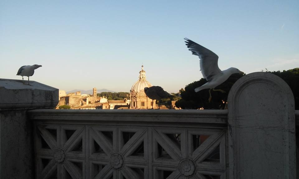 Serate-di-jazz-destate-al-Vittoriano-panoramica-dalla-terrazza-ph_-B_-Martusciello