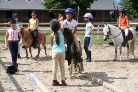 bimby pony