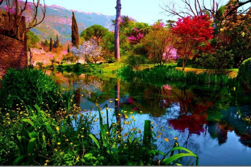 Giardini ninfa latina - Medicamente pentru prevenirea viermilor la adulți