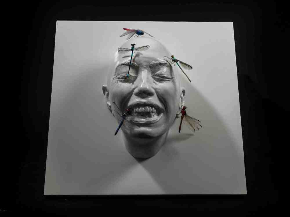_RvB Arts_Dalila Belato_Insect_11_tecnica mista_2018_40 x 40 x 12 cm.jpg