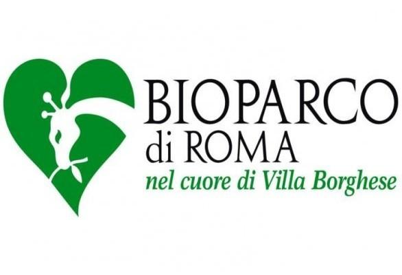 solo-a-roma-bioparco-record-visitatori-586x400