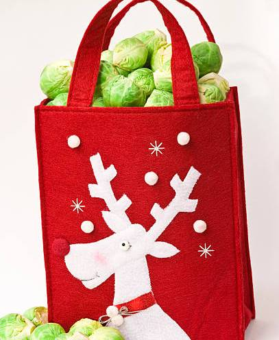 Close up still life of a Christmas red and white Reindeer bag filled with green Brussels sprouts on a white background