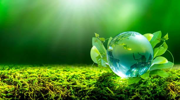 EARTH DAY 2020 (5).jpg