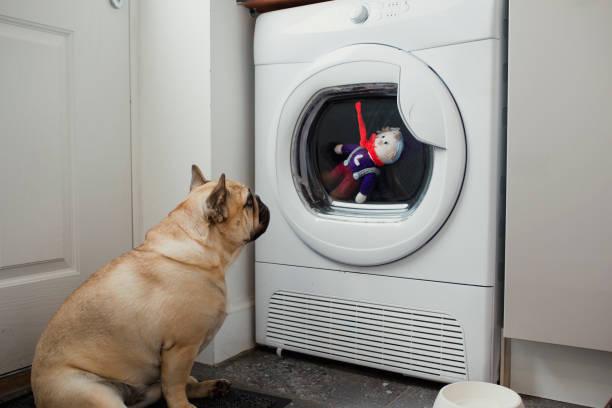 Anti-odore fai da te per lavatrice (2)