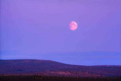 La luna piena diventa di fragola (3)
