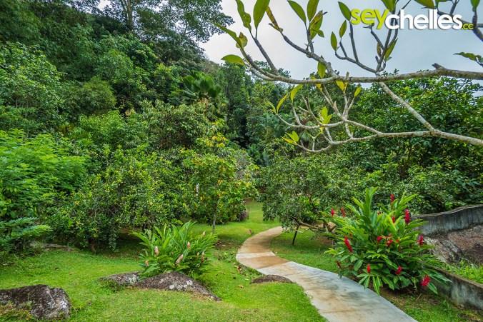 spice garden on mahe - jardin du roi