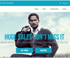 10 WordPress WooCommerce Themes 1