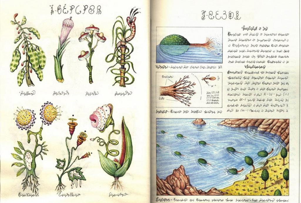 Codex Seraphinianus - 5
