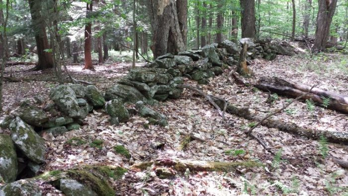 An old stone wall marks a boundary of a long-abandoned farm near Grafton, New York, once part of the colonial Manor of Rensselaerwyck. A section of the 700,000-acre manor west of the Hudson River was was surveyed for rental allotments in 1787. Credit: John Delano