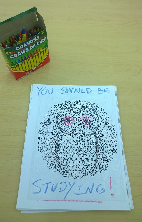 "A colorbook owl saying, ""You should be studying!"""