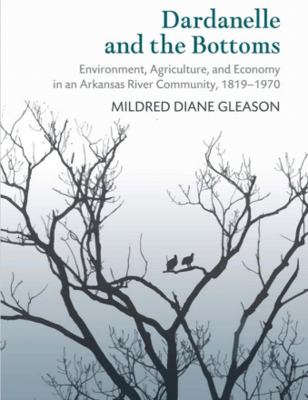 book jacket image featuring two crows on a lifeless tree branch