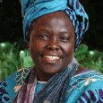 by Jacqi Rose, Bard MBA '15 Wangari Maathai was my kinda lady. When my teen sisters and their friends prattle on and on about Miley Cyrus and how excited they […]