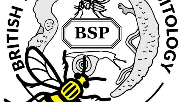 The parasitology place to bee: Meeting report from the