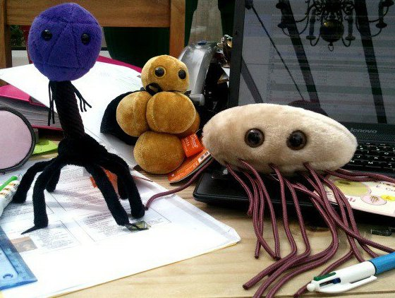 cuddly toys on desk.