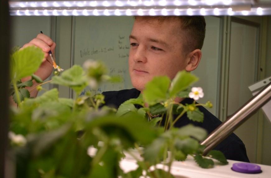 Dafydd working on a digital farm