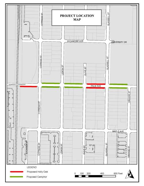 small resolution of palm ave planting map
