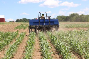 The Interseeder plants a cover crop mix between rows of corn mid-summer.
