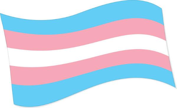 Transgender pride flag image