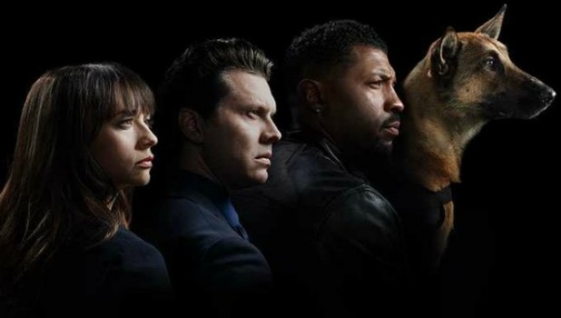 angie-tribeca-steve-carell-nancy-carell-critiques-cinema-pel·licules-cinesa-pelis-films-series-els-bastards-critica