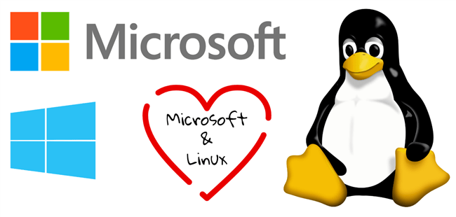 Microsoft and Windows Love Linux