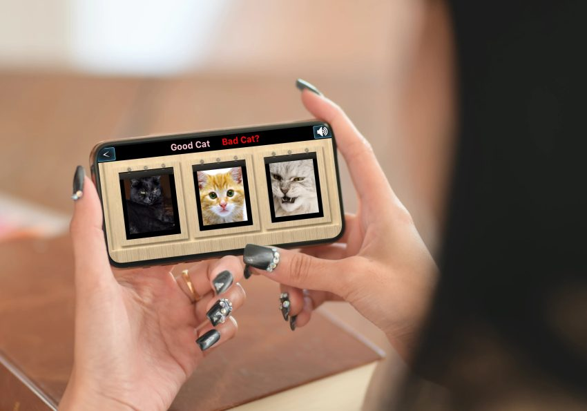 Good Cat Bad Cat Mobile Game being used on a mobile smartphone