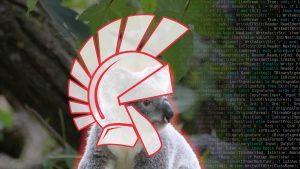 delphi-sydney-koala