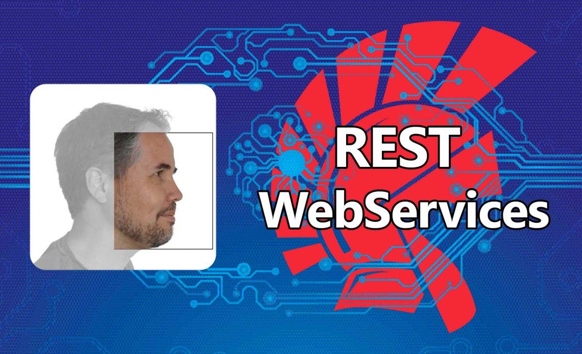 rest-webservices-danny-wind-5351780-2