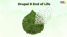 Drupal25208
